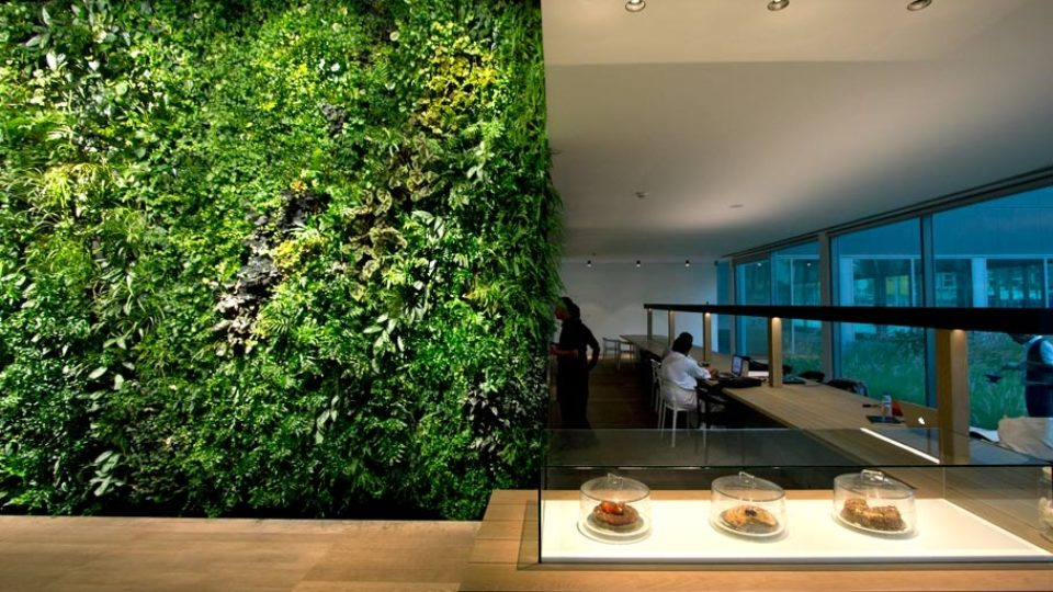 jardim-vertical-dentro-de-casa