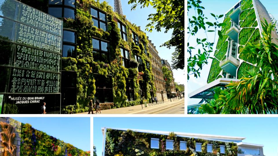 Jardins Verticais – Inspirações Internacionais