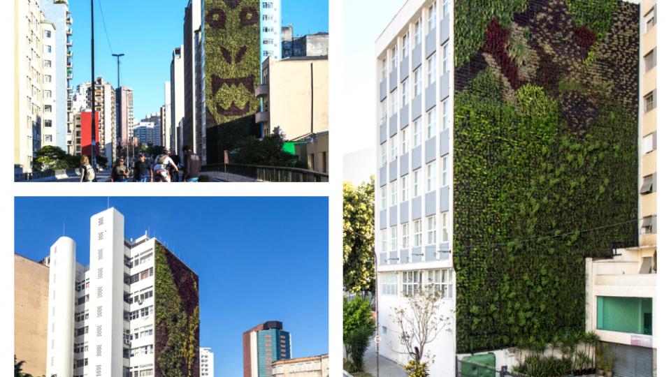 Vertical Gardens in Minhocão