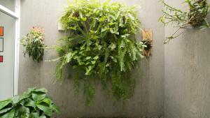 jardim vertical anacenter